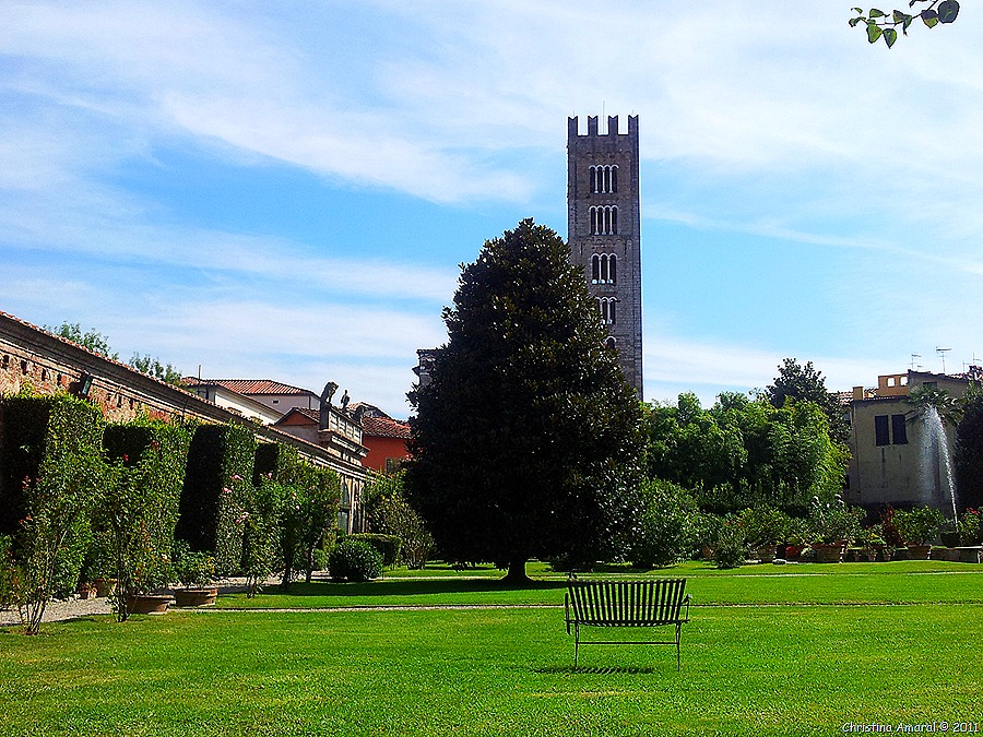 Lucca (37)